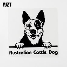 YJZT 16.6CM×15.4CM Australian Cattle Dog Peeking Vinyl Car Sticker Decal Black/Silver 8C 0570