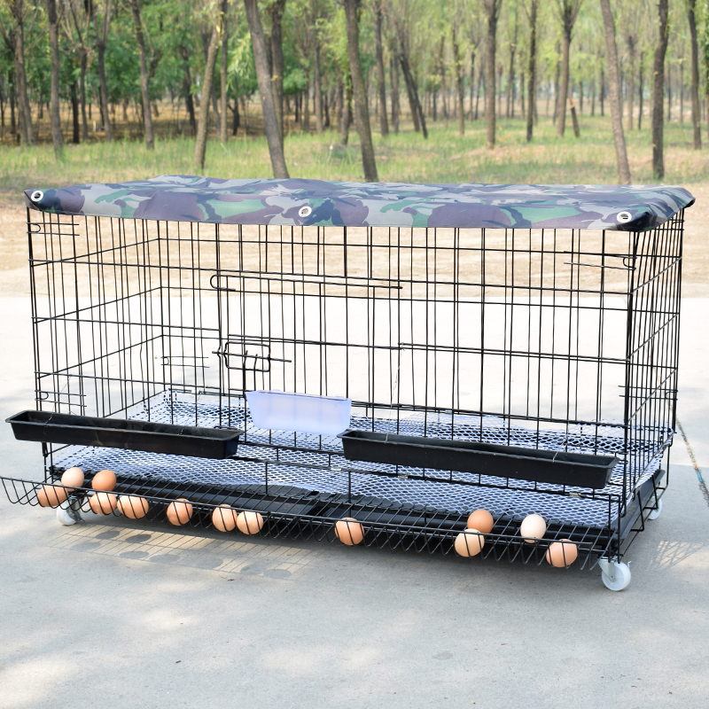 Chicken Cage   Home Egg Poultry Breeding  Folding    And Duck Automatic Rolling