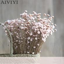 90 stks/partij natuurlijke Braziliaanse mini daisy droog vaas glazen fles decoratieve vulmateriaal thuis bruiloft decoratie accessoires