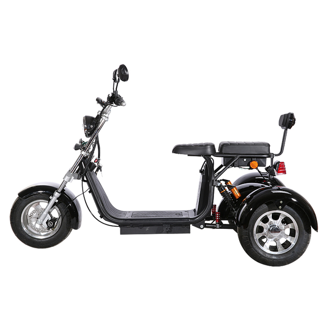 3 Wheel Citycoco Electric Motorcycle Electric Tricycles Adult Icluding EU Customs No Taxes 60V 20ah Removable Lithium Battery 5