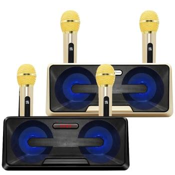Portable HIFI Microphone speaker Sdrd301 Wireless Microphone Household Ktv Outdoor Mobile Phone Bluetooth Audio Cara Ok Machine