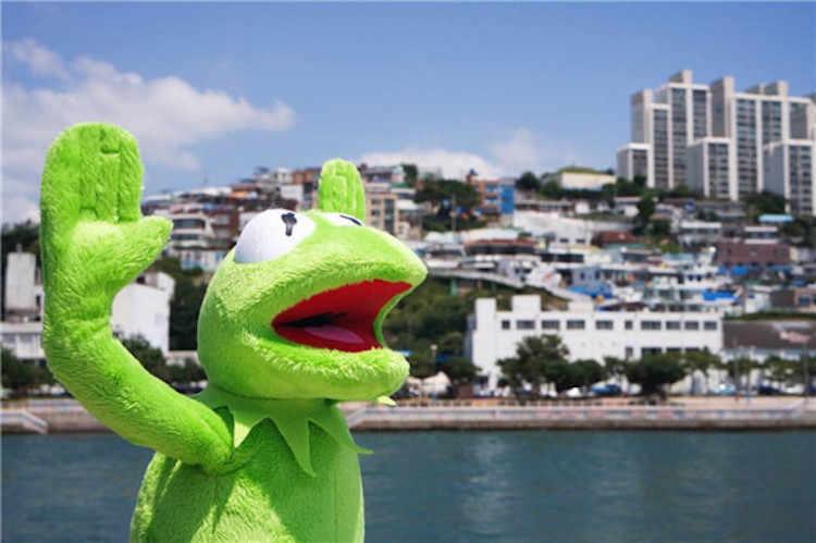 Кермит Лягушка Маппет Шоу rana peluche плюшевый Кермит игрушки Улица Сезам кукла Маппет Кермит Лягушка плюшевая лягушка включает провод