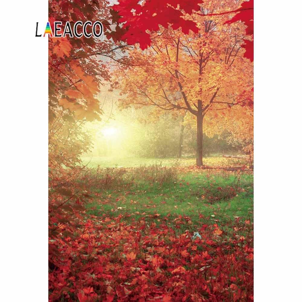 Laeacco Autumn Shiny Yellow Maples Tree Fallen Leaves Baby