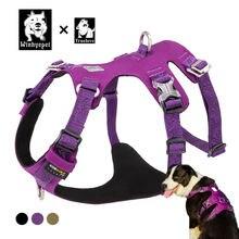 Водонепроницаемая шлейка для собак truelove дизайнерская с защитой