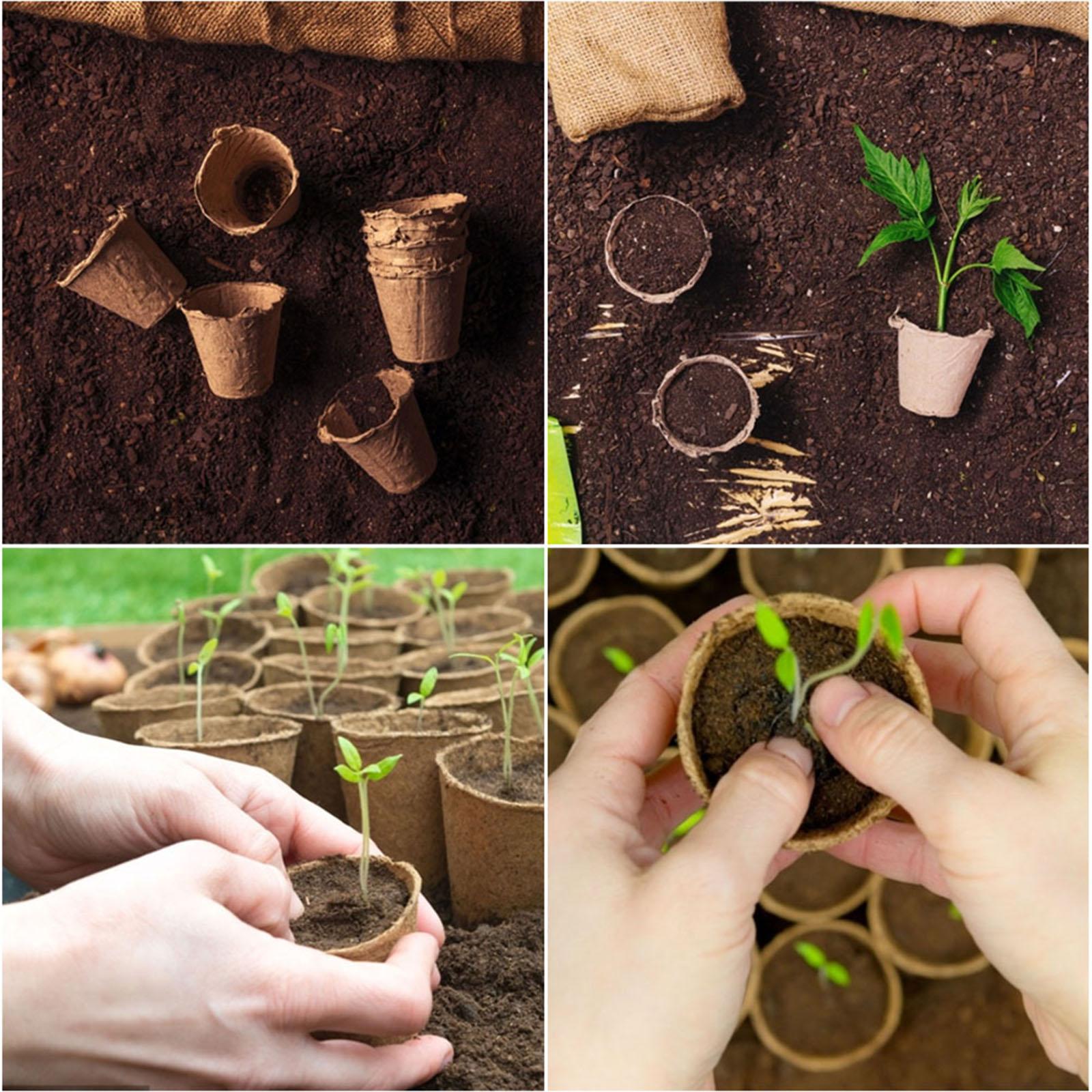 100 PCS% 2FSet For Plant Flowers 25 Plant Labels Garden Nursery Garden Seedling Tray Seed Starter Kit Seedling Tray
