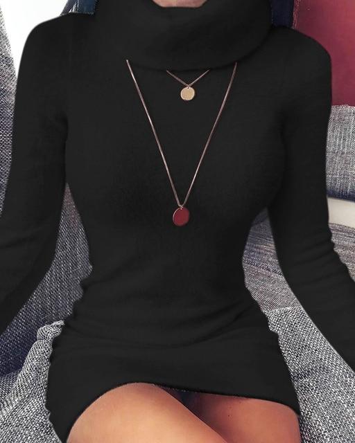 Autumn and Winter Women's High Neck Long Sleeves Slim Thin Hip Dress Warm Sweater 2