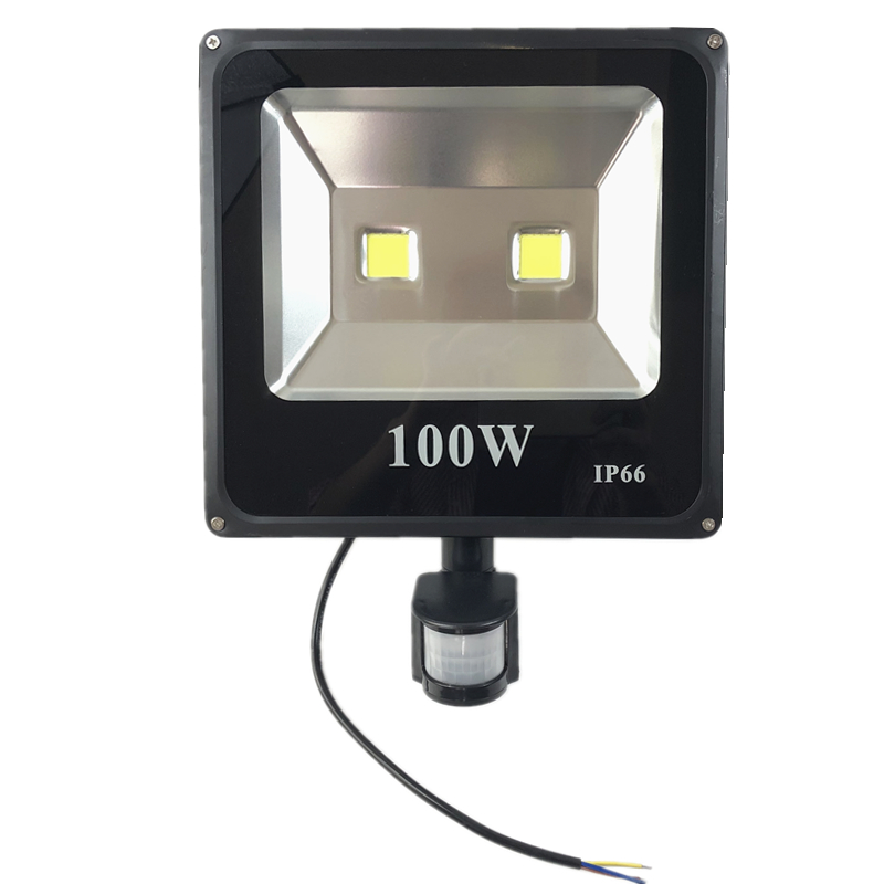 PIR <font><b>Led</b></font> <font><b>Floodlight</b></font> 10W <font><b>20W</b></font> 30W 50W 220V Outdoor Spotlight 100W Searchlight With Motion Sensor Professional Lamp Street light image