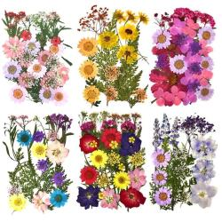 Dried Flowers Plants DIY Resin Mold Fills Epoxy UV Handmade Craft Nail Art Decoration For Jewelry Making