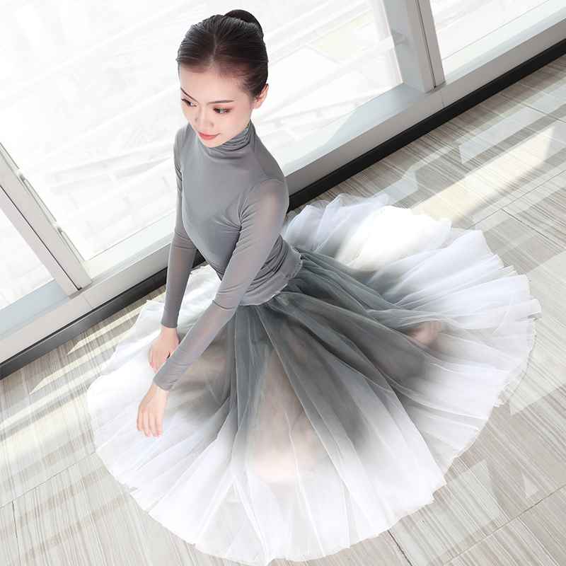 Women Ballet Leotards Adults Dance Tops Skirts Suits Adults Soft Gradient Gray Ballet Dress Dance Costumes