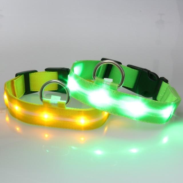 Glowing Pendant LED Night Safety Dog Collar 6