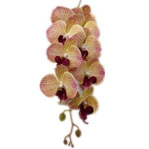 Одна латексная бабочка, Орхидея, 9 цветов на ощупь, хорошее качество, искусственная Орхидея фаленопсис, 40 дюймов, для домашнего цветочного украшения|Искусственные и сухие цветы|   | АлиЭкспресс