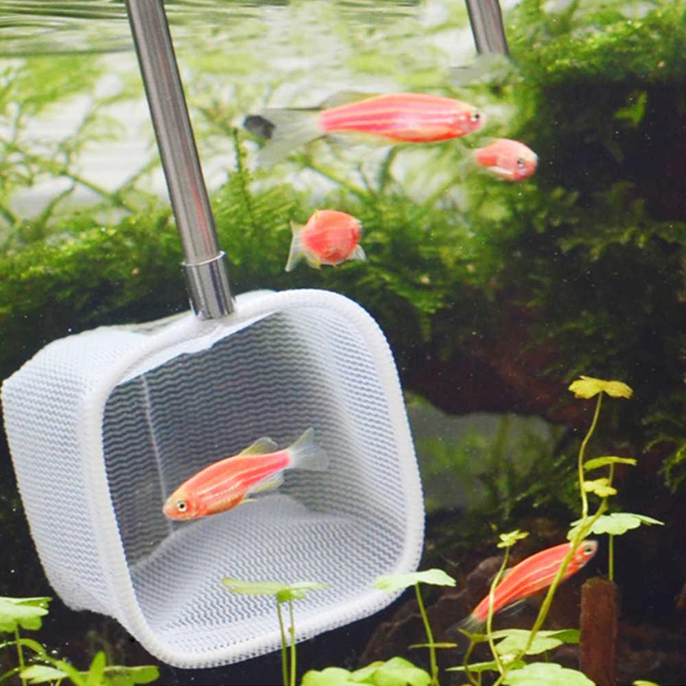 Retrattile 3D Acquario Serbatoio di Pesce di Cattura Netto In Acciaio Inox Canna Da Pesca Rotonda Tasca Piazza Gamberetti Cattura Reti 18-53CM Nuovo