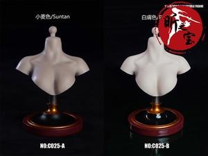 SUPER DUCK C025 Female Bust Base Display Stand Model Fit 1/6 Female Girl Head Sculpt