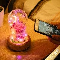 Xuyuan Streamer Bottle Bluetooth Audio Small Night Lamp Beautiful Preserved Fresh Flower LED Gift Lamp Strange New Christmas Gif