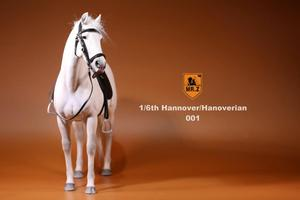 Image 5 - 1/6 soldiers figure Horse model warhorse high 33cm Birthday gift  resin model toy