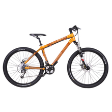 Новое поступление! Speicals! бамбуковый горный велосипед 29er