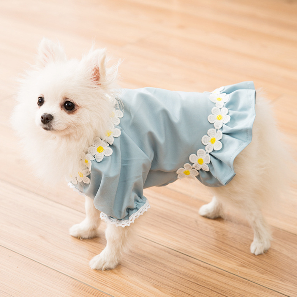 dog clothes (3)