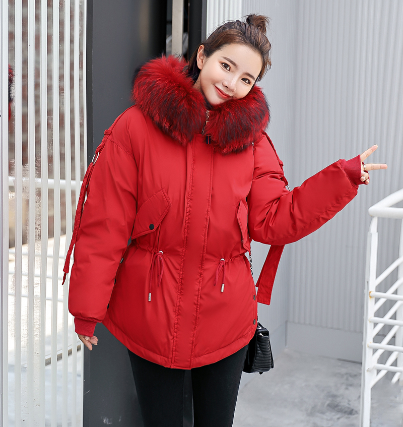 Korean Style 2019 Winter Jacket Women Cotton Padded Hooded With Fur Fe_B7_18