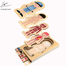 2020 New Montessori Wooden Boys Girls Body Structure Puzzle Cognitive Human Body Teaching Aids Educational Toys for Children