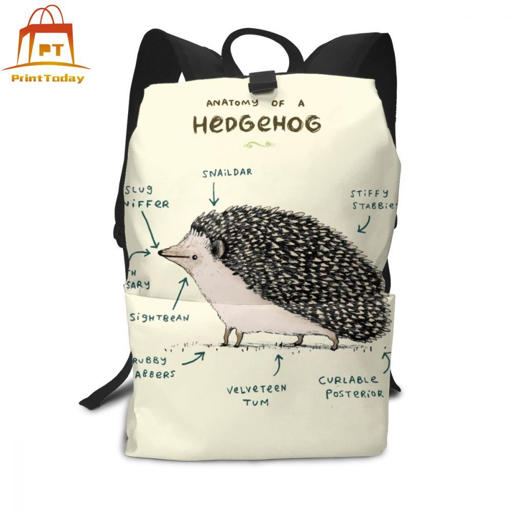 Hedgehog Backpack Hedgehog Backpacks School High Quality Bag Men - Women Pattern Trending Student Bags