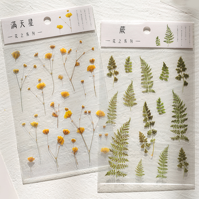 Journamm 12 Designs Natural Daisy Clover Japanese Words Stickers Transparent PET Material Flowers Leaves Plants Deco Stickers 5