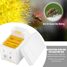 Beekeeping beehive Gardening tools and equipment agriculture Bee Hive Beekeeping King Box Pollination Box Beekeeping Tool gift