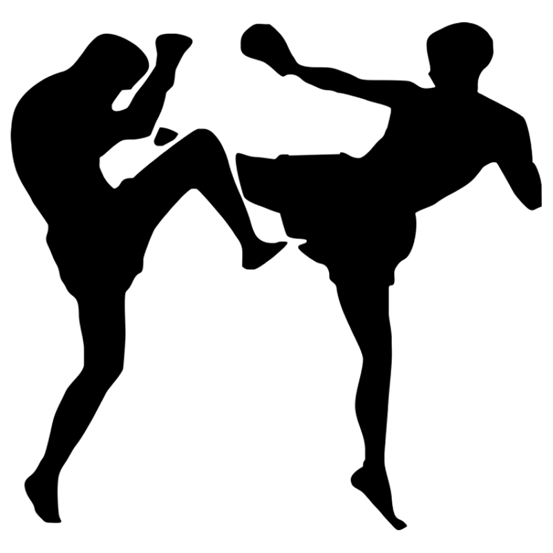 CS-1589#15*14cm Kickboxers Reflective Funny Car Sticker Vinyl Decal Silver/black For Auto Car Stickers Styling No Background