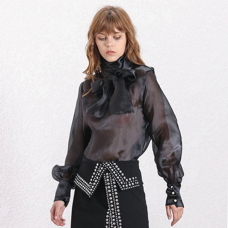 H468d8e10a12c4771b0330f6b3c423700W - TWOTWINSTYLE Elegant Perspective Womens Tops And Blouses Lantern Sleeve Lace Up Plus Size Shirts Female Autumn Fashion New