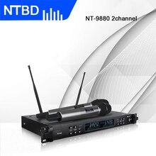 NTBD сценическая Производительность Профессиональный двойной беспроводной микрофон системы на большие расстояния большой экран два беспроводных микрофона