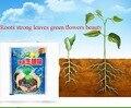 1 шт. Быстрый порошок для укоренения растений цветок трансплантация удобрения способствует упитыванию и упитыванию быстро рассады агент Gao ...