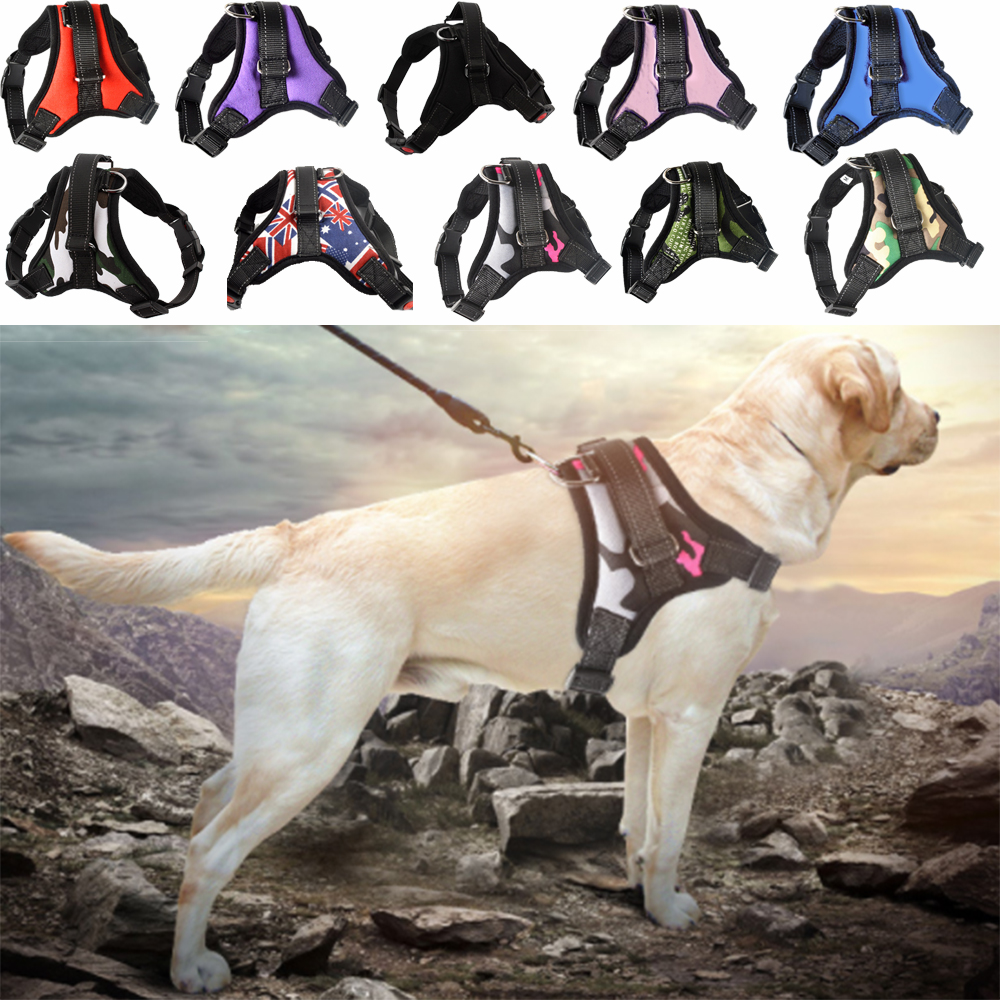 Pet Dog and Cat Adjustable Harness with Leash Reflective and Breathable for Small and Large Dog Harness Vest Pet Supplies