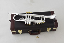 new Trumpet Model  Silver Plated LT190S-85 Trumpete  Give me two nozzles