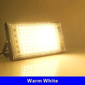 100W LED Flood Light AC 220V P