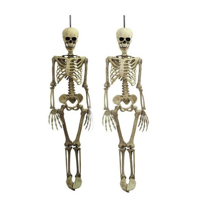 1Pcs Halloween Prop Human Skeleton Full Size Skull Hand Life Body Anatomy Model Decor 38x12cm