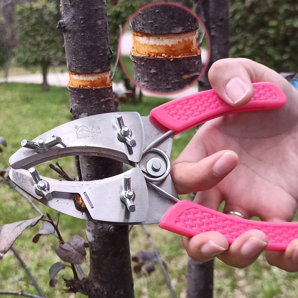 RDDSPON Ring Shaped Fruit Tree Peeler Bark Stripping Cutting Stainless Steel Grafting Tool Garden Orchard Tools Branch Shears