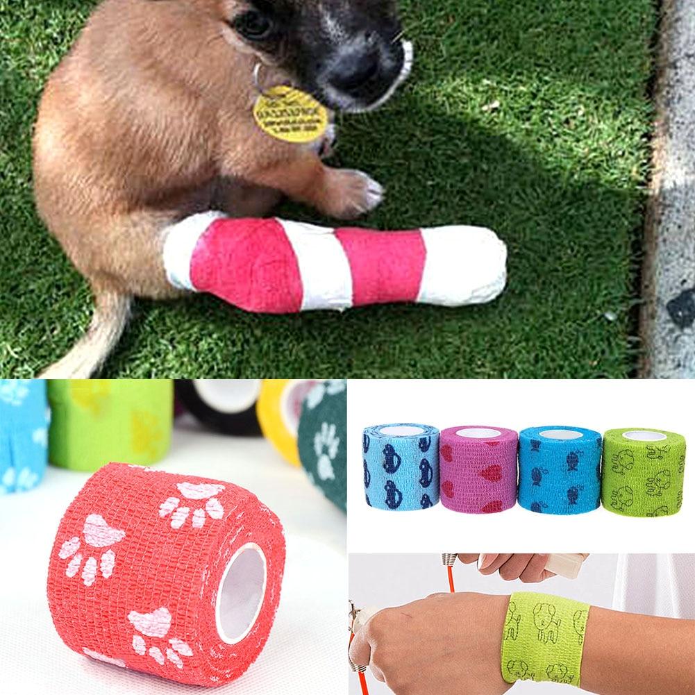 font b Pet b font Cat Dog Animal Wound Medical Elastic Bandage 5cmx4 5m font