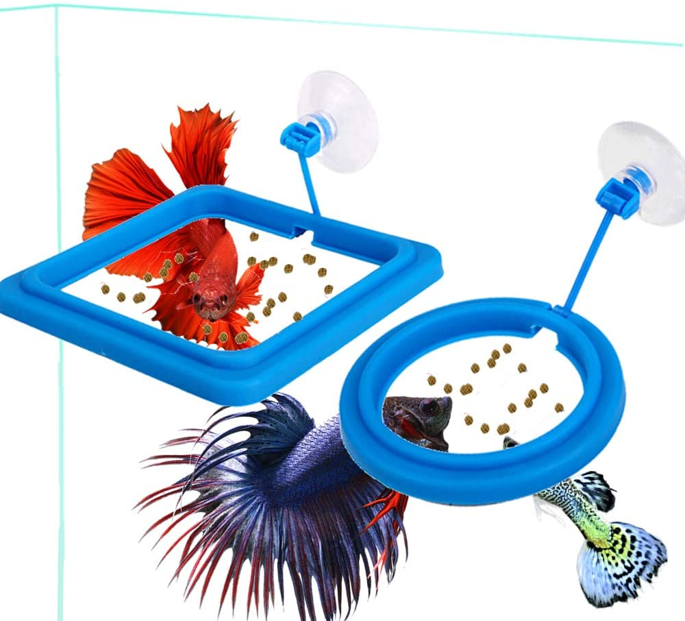 Fish Feeding Ring Fish Safe Floating Food Feeder Circle Blue with Suction Cup Easy to Install <font><b>Aquarium</b></font> Square and <font><b>Round</b></font> Shape image