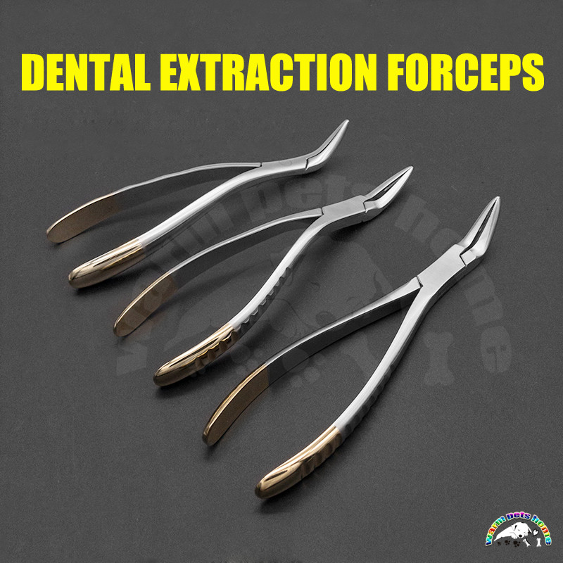 Dental Extracting Forceps Upper Lower Jaw Extraction Forceps Teeth Plier Dental Tool Dental Root Clamp Instruments Veterinary Pet Surgical Instruments Aliexpress