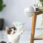 Pet Toy Creative Fun...