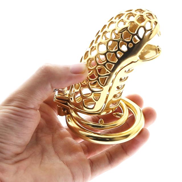 penis złoty rozmiar
