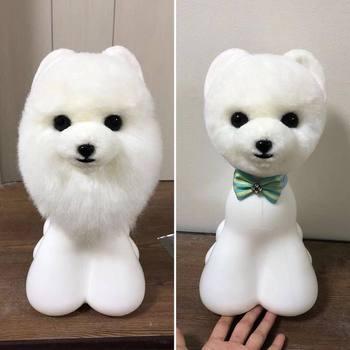 Pet grooming teddy bear 1 head dummy with 3 pcs teddy bear head fur