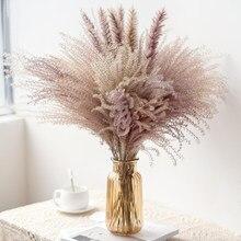 Ramo de Flores Secas naturales para decoración del hogar, hierba de Pampas pequeñas de caña Real, Flores ornamentales, torunda, 30 Uds.