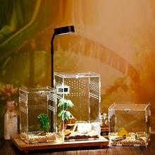 Для разведения рептилий коробка акриловая прозрачная паук ящерица