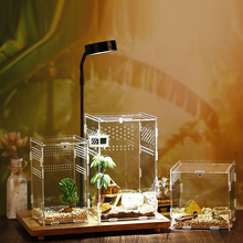 Reptile Breeding Box Acrylic Transparent Spider Lizard Scorpion Enti's Acrylic Assembled Insect Breathable Terrarium