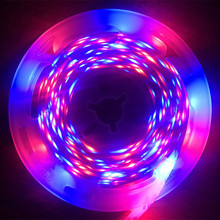 5 meter 300Leds Non-waterproof RGB Led Strip Light 2835 DC12V 60Leds/M Flexible Lighting Ribbon Tape
