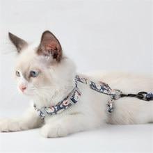Coleiras ajustáveis para gatos, 8 cores para gatos, estilo japonês, coleira e coleira, passeio, katten, gola de chumbo, animais de estimação suprimentos