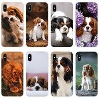 Accesorios de la cubierta de la piel del Cavalier King Charles Spaniel perro para Samsung A10 A30 A40 A50 A60 A70 M30 Galaxy nota 2 3 4 5 8 9 10