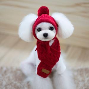 Кошка Собака красный головной убор шарф шапка набор шерстяная повязка Тедди шапка осень зима теплая вязаная шапка для домашних животных на ...