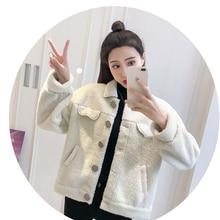 Модная короткая куртка пальто Женская шерстяная куртка с длинным рукавом однобортное свободное бархатное плотное Женское пальто