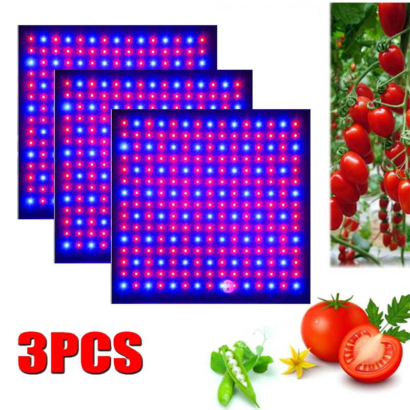3 pièces LED grandir lumière 1000W lampe pour plantes spectre complet Phyto lampe Fitolampy herbes d'intérieur lumière pour serre LED pousser tente boîte